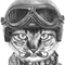Ronn Kools's avatar