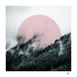 Foggy Woods 2