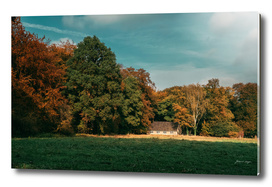 Rural autumn landscape