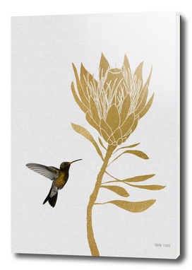 Hummingbird & Flower I