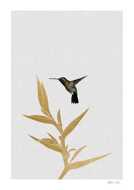 Hummingbird & Flower II