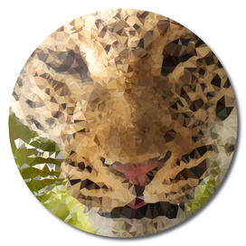Leopard Geometric Fine Art