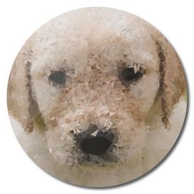 Golden Puppy Geometric Art