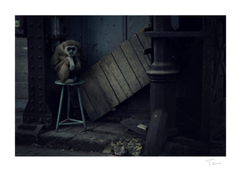 Lost Animals -  Series nr.4