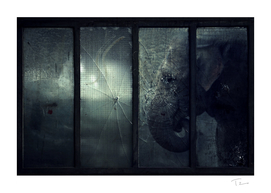 Lost Animals -  Series nr.5