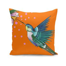 Hummingbird Orange