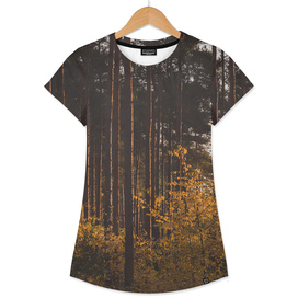 Forest 10