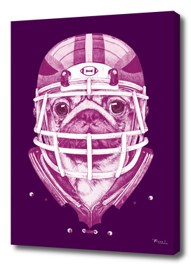 American Pug Football Purple
