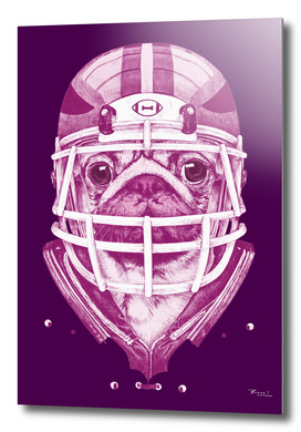 American Pug Football Purple