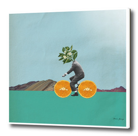 the orange cyclist