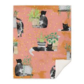 Cats & Plants