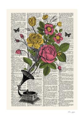 Gramophone Floral Dictionary Print