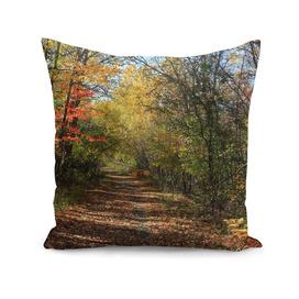 Autumn Blanket