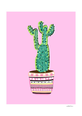 Cactus Love - Part 2