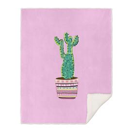 Cactus Love - Part 2