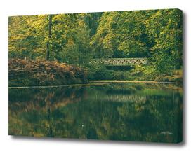 Pond with bridge in autumn forest
