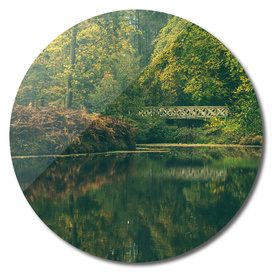 Pond with bridge in autumn forest