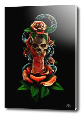 Tattoo Series II