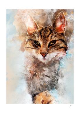 Cat Saba art