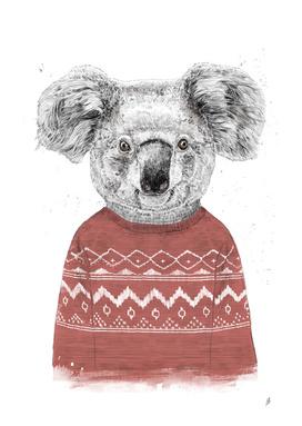 Winter koala (red)