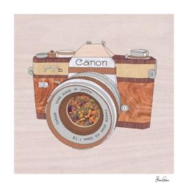 Wood Canon
