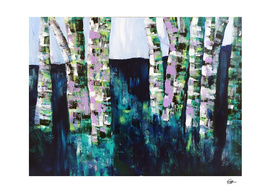 Lost Amongst Birches
