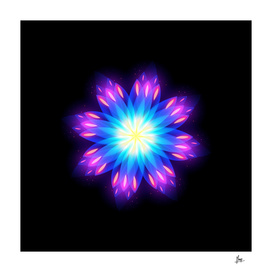 abstract flower2