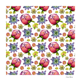 Succulents and Peonies Pattern