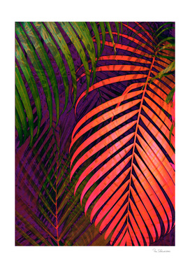 COLORFUL TROPICAL LEAVES no1