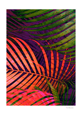COLORFUL TROPICAL LEAVES no5