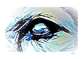 Soul Eye
