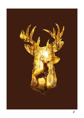 Deer's Woods