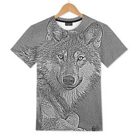 Wolf forest animals