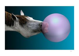 Horse Bubbles