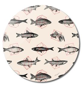 Fishes in Geometrics