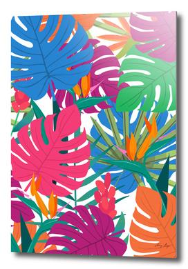 tropical plant 3