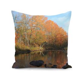 Autumn Brook Reflections
