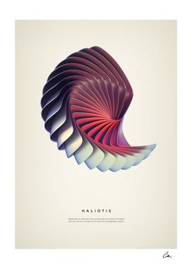 Haliotis