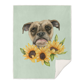 Cheerful   Bulldog Mix with Sunflowers Watercolor Painting