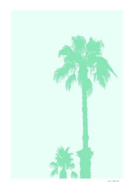 Mint Palm Trees