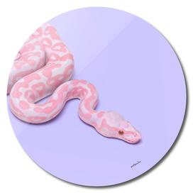 PinkSnake