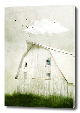 Weathered White Barn