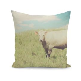 Vintage Summer Cow