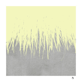Concrete Fringe Yellow