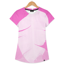 Tropical Banana Leave Pastel Pink Ombre Design