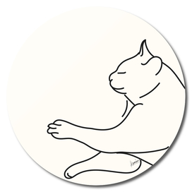 Sleeping Cat #1