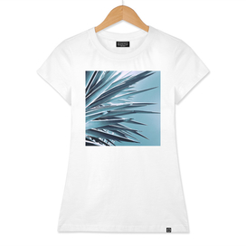 Palm Rays - Duotone Teal and Black