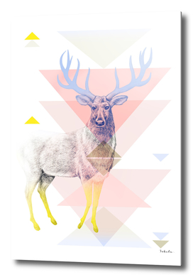 Mystical Woodland Animals: The Deer