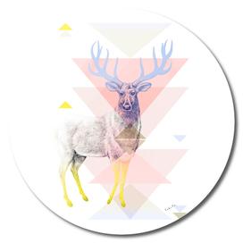 Mystical Woodland Animals: The Deer