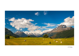 Beautiful Pastoral Alpine Landscape in New Zealand